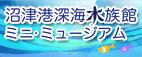 沼津港深海水族館ミニ・ミュージアム 期間限定オープン